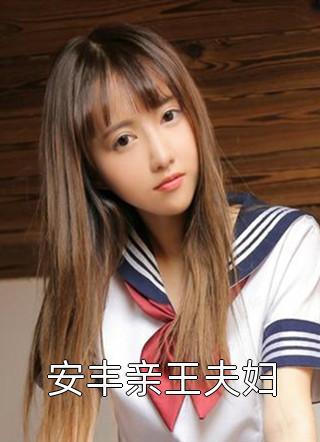 安丰亲王夫妇小说